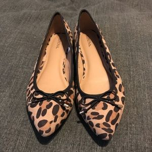 Merona Noele Cheetah Print Flat Pointed Toe